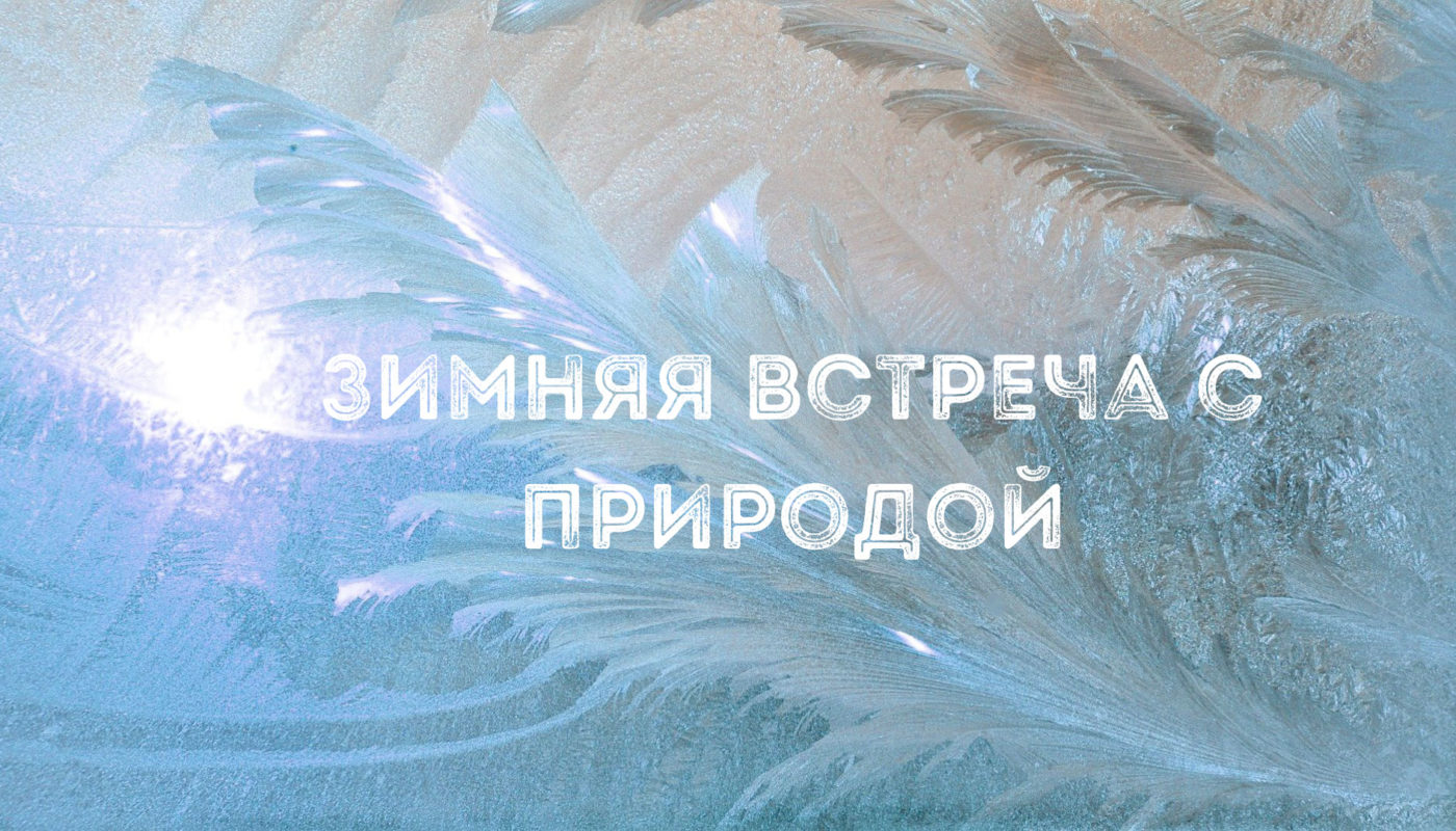 Зимняя-встреча-с-природой-5